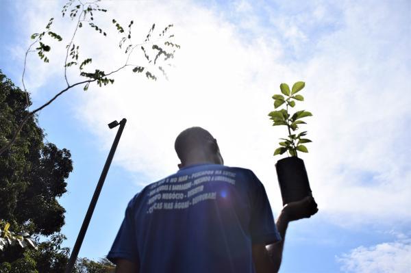 CNBB Convida a População Brasileira para iniciativa coletiva no dia de finados
